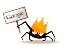 עכביש גוגל