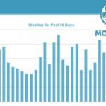 חודש אחרי עדכון פינגווין 2 – מעקב והמלצות לעתיד